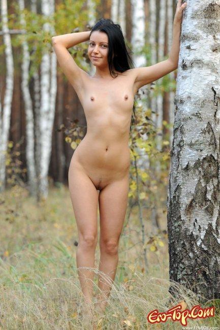 Голая брюнетка в берёзовой роще. Фото эротика.